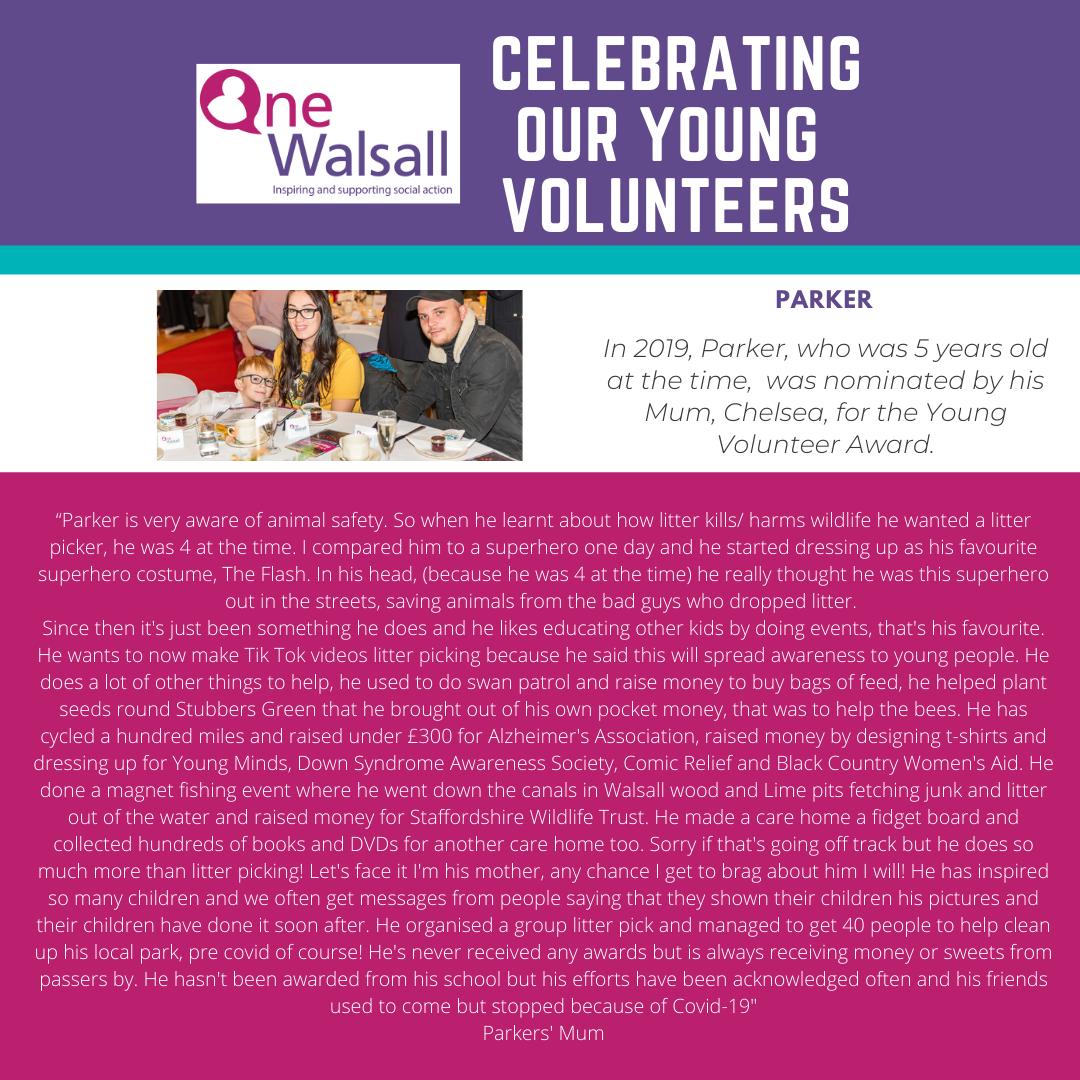 Instagram young volunteers poster