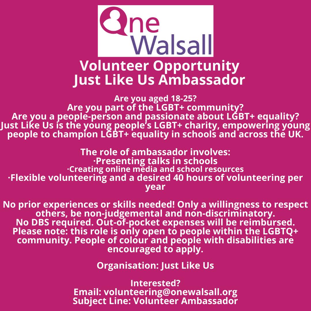 Just Like Us Volunteer opportunity